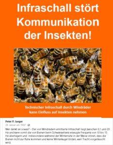 Infraschall und Insekten